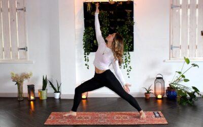 Find en fantastisk yogamåtte